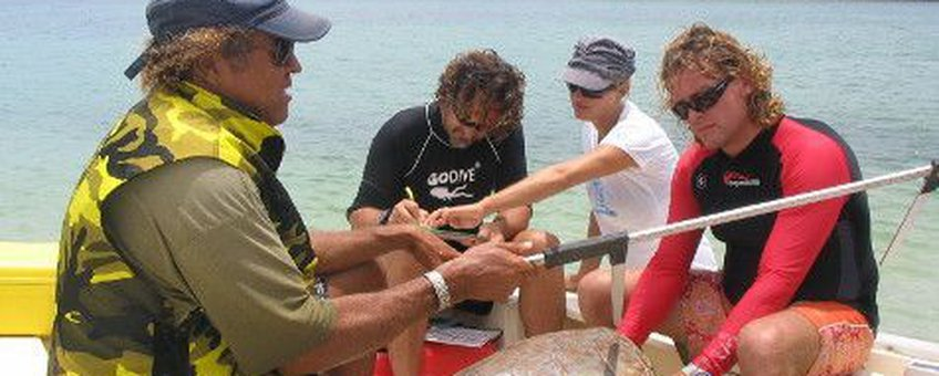 Measuring sea turtles during the Sea Turtle Monitoring Workshop on Bonaire (May 2010)