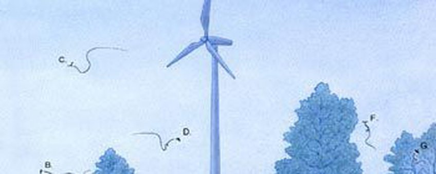 illustratie wind en vleeermuizen 1