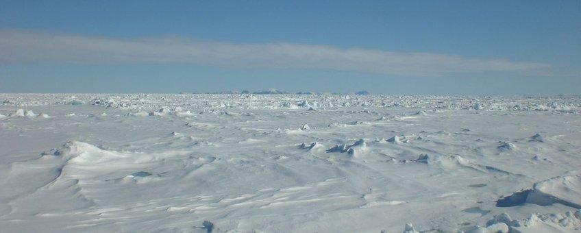Arctisch zee-ijs