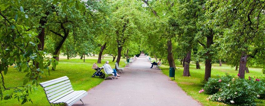 Park, bomen
