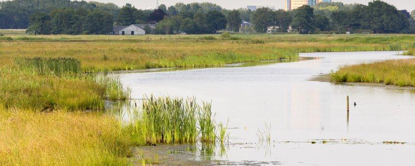 Klimaatbuffer Onlanden bij Groningen