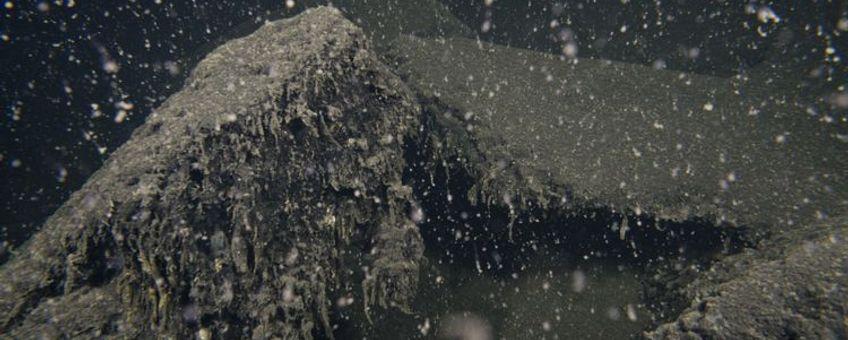 Levenloze bodem van het Grevelingenmeer op 18 meter diepte, juli, 2013