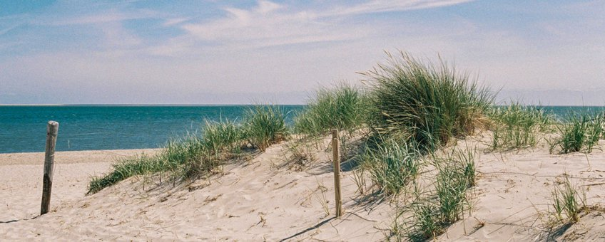 Texelse strand