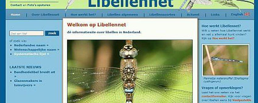 libellennet screen 1