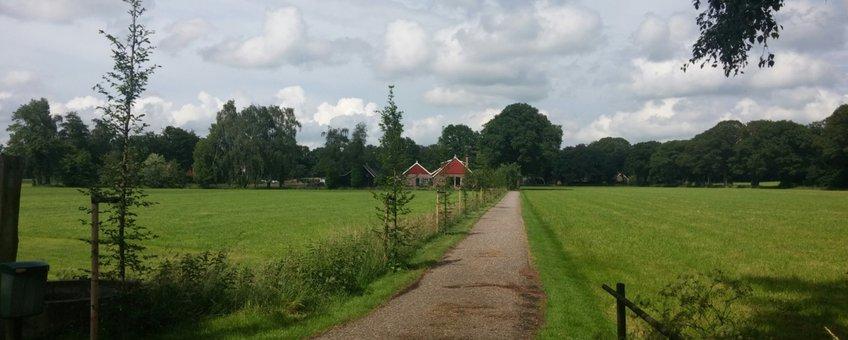 Beplanting langs oprijlaan in Barlo gemeente Aalten