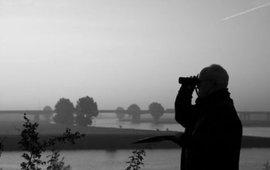 vogelstellen_Voorhavendijk2