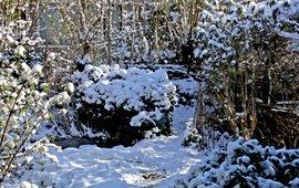 winter - primair