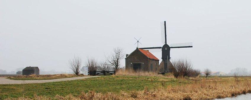 Rond vier historische molens in het Land van Heusden en Altena komen 'voedselveldjes', kruidenranden, lage bessenstruiken en hoogstambomen