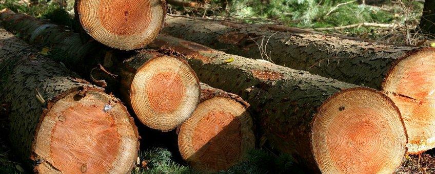 Gekapt hout