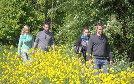 Vier wandelende mensen in het Mallebos bij Spijkenisse