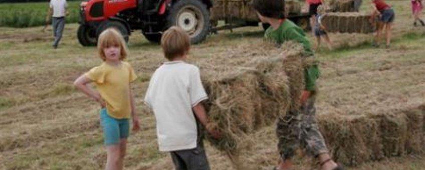Kids halen hooi binnen Steenbruggen