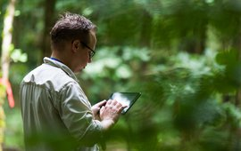 Vastleggen van gegevens in het bos