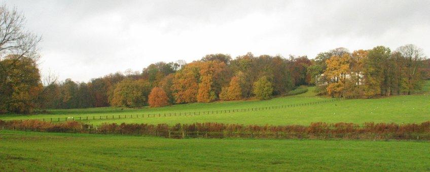 Park Sonsbeek, Arnhem