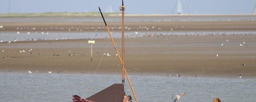 Nederland kent een groot aantal vogelrijke wetlands, waar doelstellingen gelden voor het aantal vogels