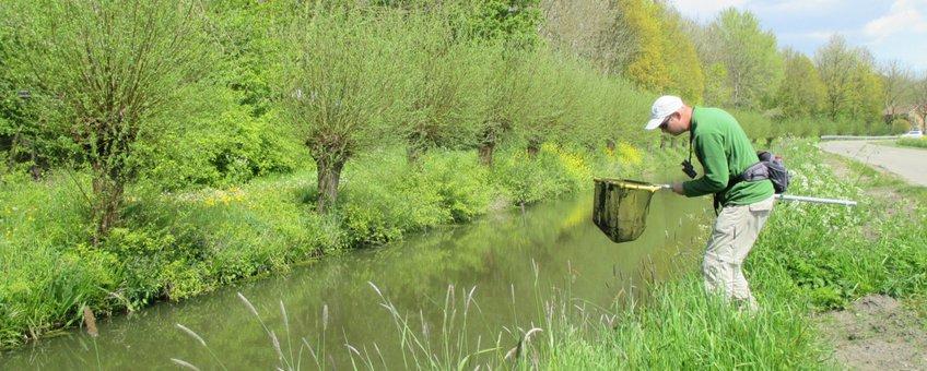 Veldwerker Sietze van Dijk inventariseert soorten in de Utrechtse natuur