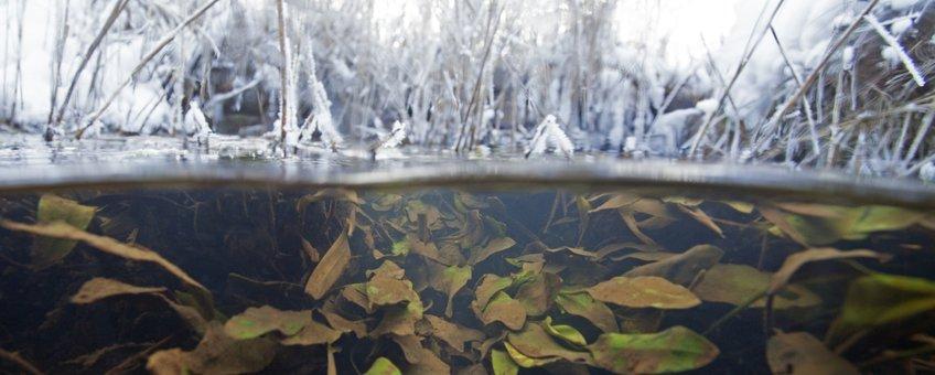 onder water ijs en sneeuw