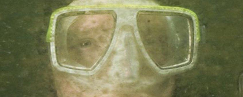 Extreme algenbloei in de Oosterschelde