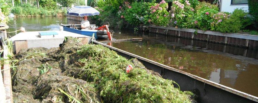 Waterbeheerder schept invasieve exoten uit water