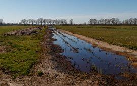 De Hilver watergreppel zomer - eenmalig gebruik