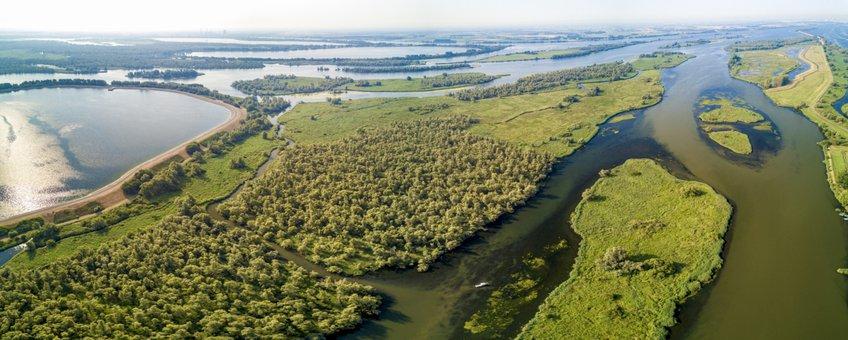 6.De Biesbosch is het grootste zoetwatergetijden gebied van Europa