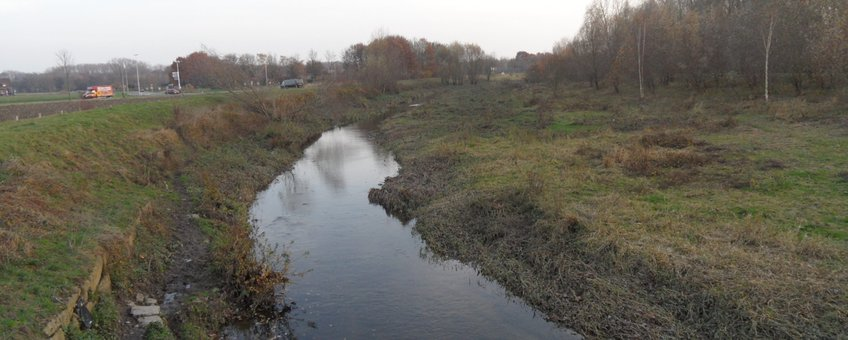 Geleenbeek. Voorbeeld van een meanderende beek met voldoende begeleidende groenstructuren voor vleermuizen