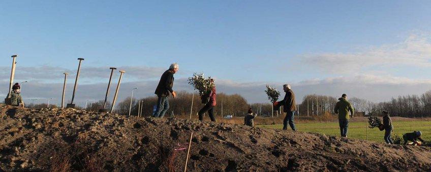 Bewoners van een buurt planten bomen