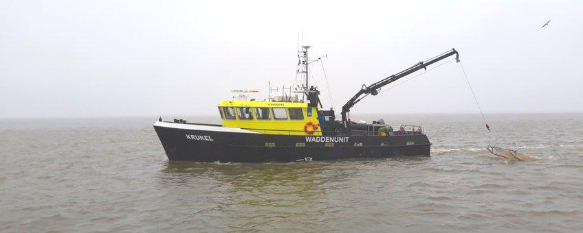 Onderzoeksschip de Krukel (LNV)