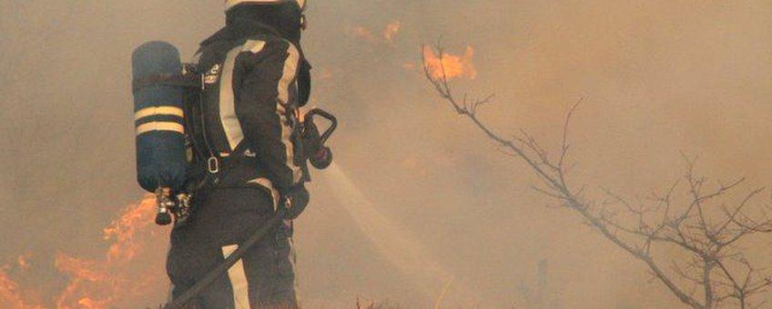 Een brandweerman vecht tegen de vlammen van een duinbrand bij Bergen aan Zee in 2010 (foto: Jelzo) Foto: Jelzo, gfd-licentie