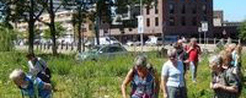 Kansen voor natuur in de stad, voor biodiversiteit en voor mensen