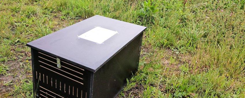 Kist met afvalcontainer eikenprocessierupsnesten in bloemrijke berm