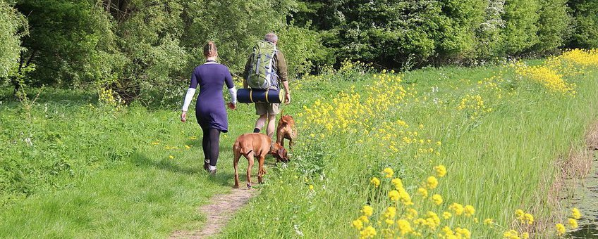 Backpackers met honden in Mallebos