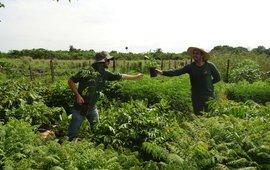 Medewerkers op de kwekerij