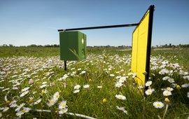 Insectencamera in het wormerveld