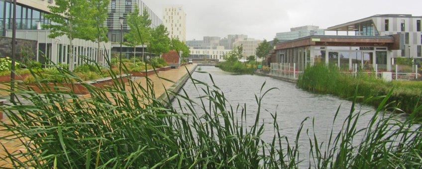 water en groen in woonwijk (brochure)