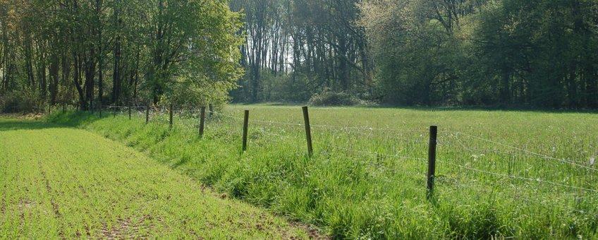 De landbouw is onlosmakelijk met de natuur verbonden en kan onderdeel van de oplossing zijn