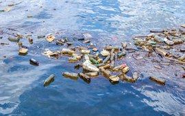 Plastics komen in de natuur terecht.