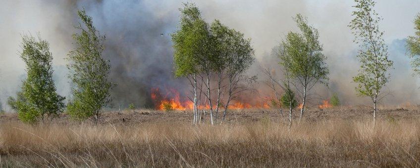 Brand in de Deurnsche Peel april 2020