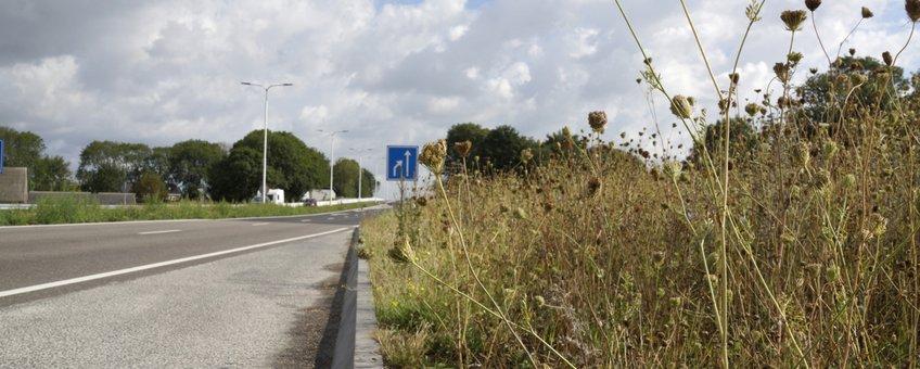 Ecologisch beheer van berm bij bushalte