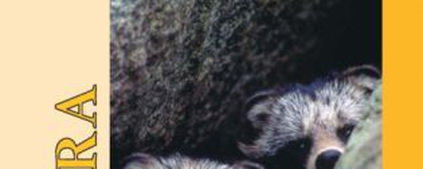 kaft lutra wasbeerhond
