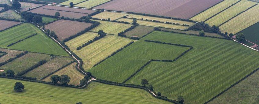 Maasheggen luchtfoto - eenmalig gebruik