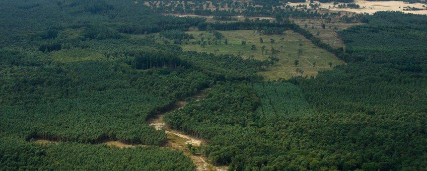 Het Hulshorsterzand op de achtergrond en de heidecorridor die is opengemaakt richting de Elspeetsche Heide