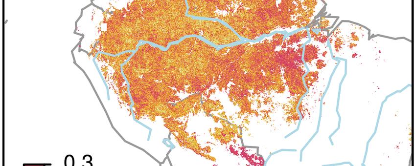 Kaart van het Amazonegebied met in lichte kleuren veel en in donkerpaars weinig dynamiek, dat wil zeggen: een klein herstelvermogen. De donkere gebieden (0.3) verkeren in een kwetsbare toestand.