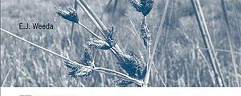 omslag gids E.J. Weeda: Waterplanten als maat voor de biologische kwaliteit van oppervlaktewateren - biotoets met 15 plantensoorten in de Noardlike Fryske Wâlden. Uitgave Alterra, Wageningen UR.