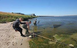Zegenvissen voor project Zegen in de Delta