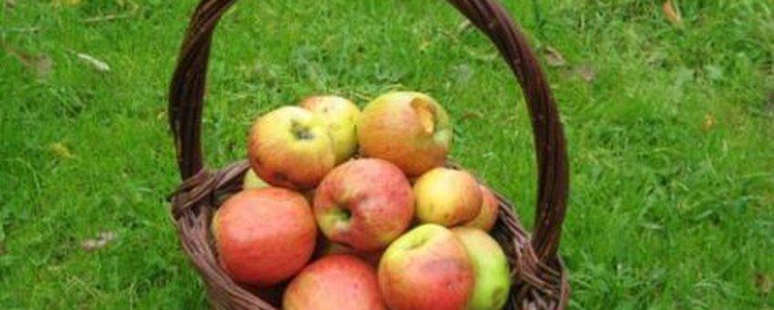Mandje appels