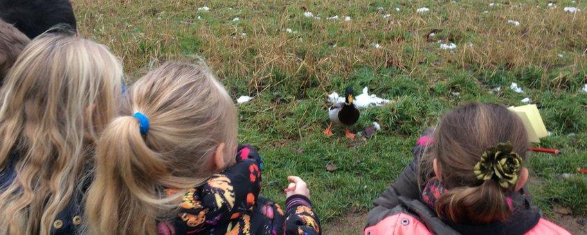 Basisschoolkinderen CNS Basisschool De Vlinderboom in Ede tellen vogels in kader tuinvogeltelling