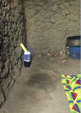 Mosquito trap Rwanda citizen science