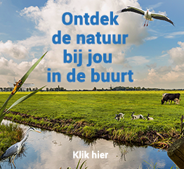 Nature Today nl