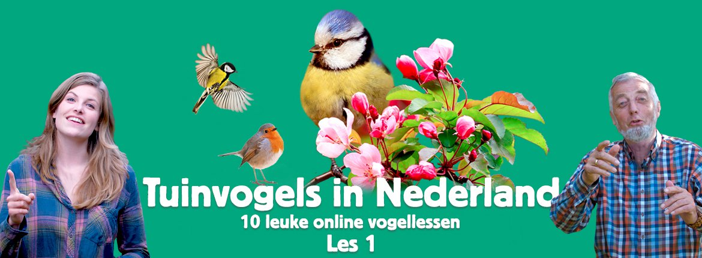 Header les 1 tuinvogelcursus