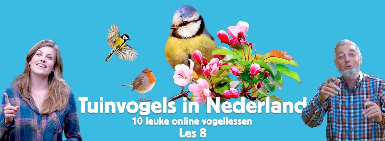 Header les 8 tuinvogelcursus